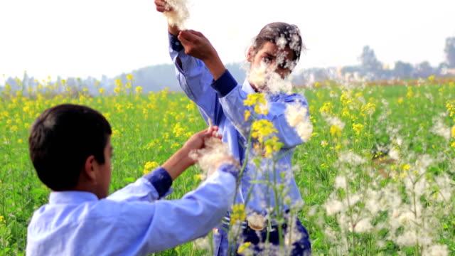 Tiener meisje waait paardebloem zaden buiten in de natuur video