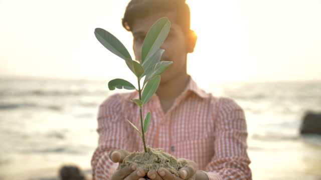vídeos y material grabado en eventos de stock de adolescente sosteniendo un pequeño muestreo de planta o árbol verde. - servicios sociales