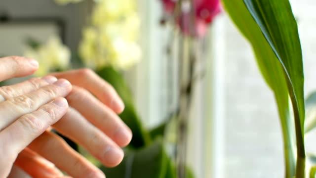 stockvideo's en b-roll-footage met tiener zich vergenoegd in handen toepassing van zonnebrandcrème bescherming te bewapenen vinger closeup - lipbalsem