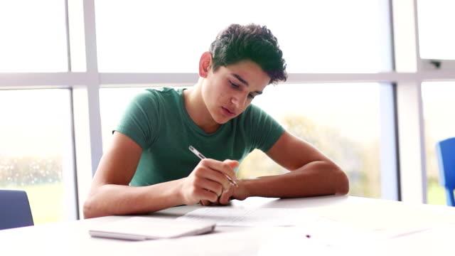 Adolescente, trabalhando duro na escola - vídeo