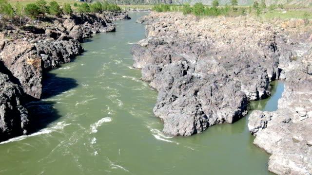 アルタイ川 Oroktoi、ロシアの近くのコットンの Teldykpen 急流 ビデオ
