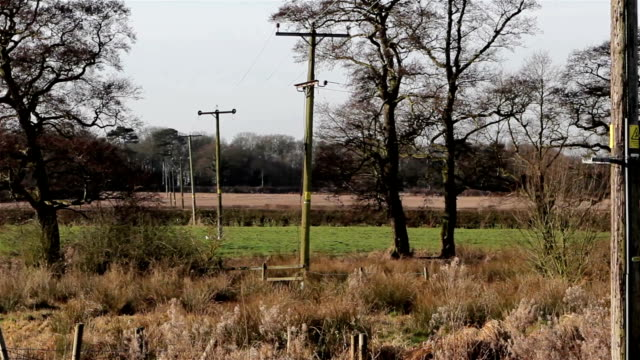 Telephone Poles, Electric Lines & Cables Stretch Away in Beautiful Meadow Field - Countryside Rural English Nature Views video
