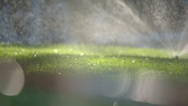 tele-schuss eine bewässerung im volkspark mit abstrakten bokeh - bewässerungsanlage stock-videos und b-roll-filmmaterial