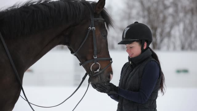 Tenderness, woman give feed and stroking her horse at winter day video