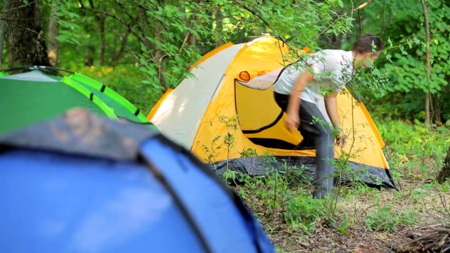Tent in the woods europe man stopped for the night in kempenge video