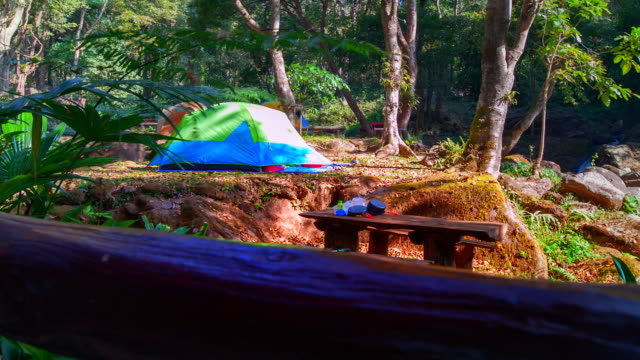 Tenting in the Forrest video