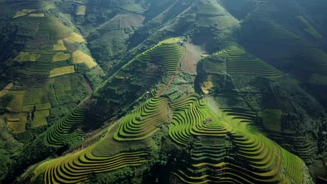Terraced paddy fields  farm on hilly or mountainous terrain, normally farming in east, south, and southeast Asia Terraced paddy fields  farm on hilly or mountainous terrain, normally farming in east, south, and southeast Asia sa pa stock videos & royalty-free footage
