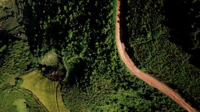 通常の東、南、農業、丘陵や山地の地形と東南アジアの棚田ファーム - インドネシア点の映像素材/bロール