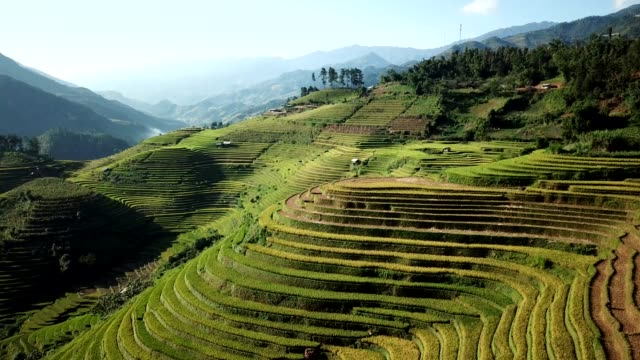 Terraced paddy fields  farm on hilly or mountainous terrain, normally farming in east, south, and southeast Asia
