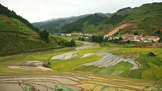 terraced rice field in Tule Village video