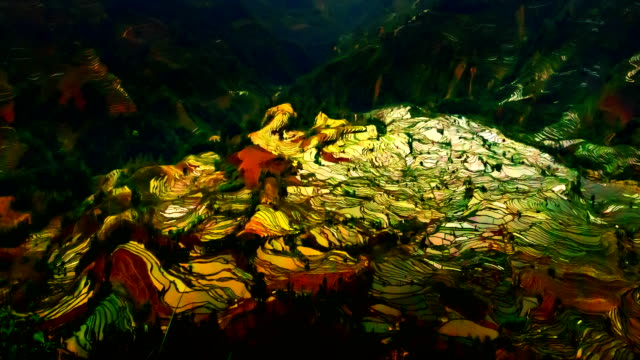 Terraced rice fields in Laohuzui Yuanyang video