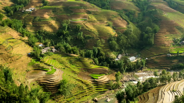 Terraced rice paddies in northern Vietnam Time Lapse Time Lapse of the amazing terraced rice paddies in the mountains of northern Vietnam. sa pa stock videos & royalty-free footage