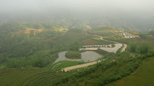 Terraced Rice Paddies In Northern Vietnam Amazing terraced rice paddies in the mountains of northern Vietnam. sa pa stock videos & royalty-free footage