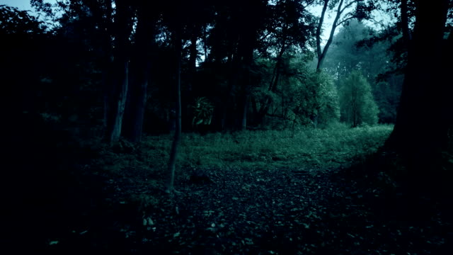 A terrifying monster or alien walking in the forest, staring to the camera video