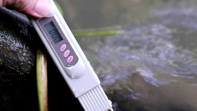 PH Test Kit on swim pool river water inspector Equipment PH Test Kit on chlorine and fresh river water, temperature inspector. Procedure to check day week level of safety in river fresh water to make sure water is clean and can swim chlorine stock videos & royalty-free footage