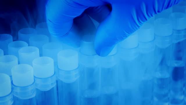 provrör plockas upp från kyl förvaring - test tube bildbanksvideor och videomaterial från bakom kulisserna