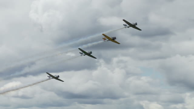 T-6 Texan Formation 24_1 video