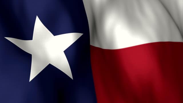 Texas Flag High Detail - Looping video