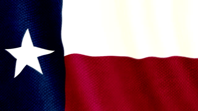 Texas flag waving animation video