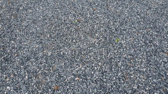texture of crushed rock. - ghiaia video stock e b–roll