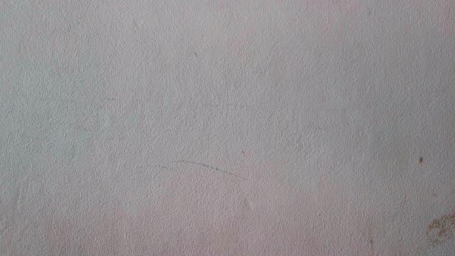 vídeos de stock e filmes b-roll de texture of old wall shot by smart phone truck shot - white wall