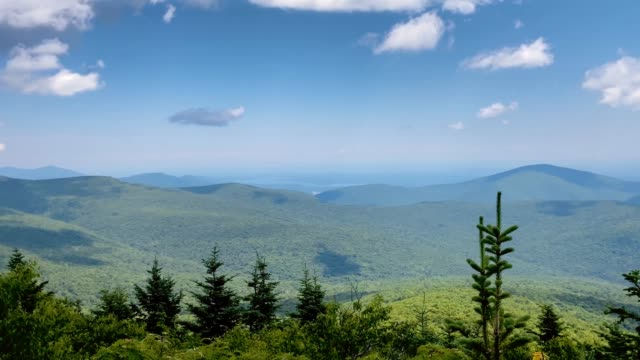 tha sweeping view of the beautiful catskill mountain range in new york state - conifera video stock e b–roll