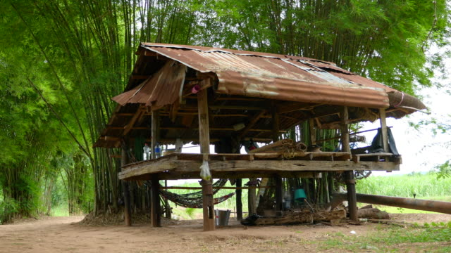 Thai cottage in the field. video