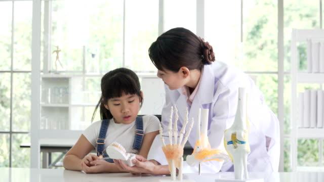 タイの女の子が医者半ば日本語と彼女の歯について学習をお楽しみください。 - 歯科点の映像素材/bロール