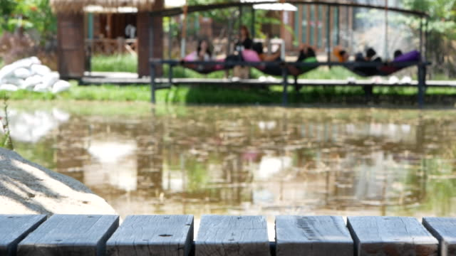 thai tourists sitting on net beside the rice fields outside the cafe to relax after the government announced the release of the lock down, phase 3 due to the epidemic of the corona virus. - кофеин стоковые видео и кадры b-roll