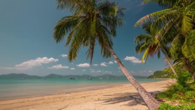 thailand summer day phuket palm beach panorama 4k time lapse video