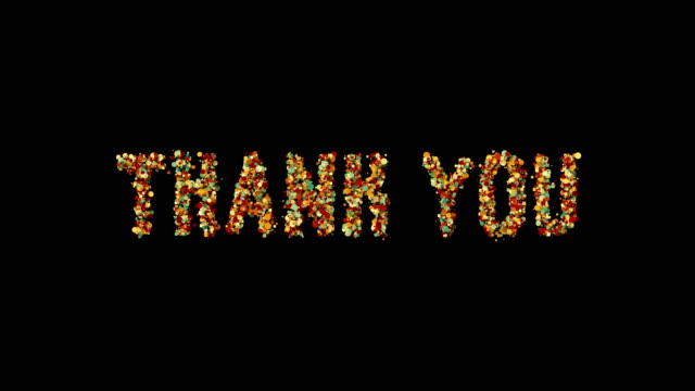 Thank you motion graphics flat animation revealer motion poster, banner text.
