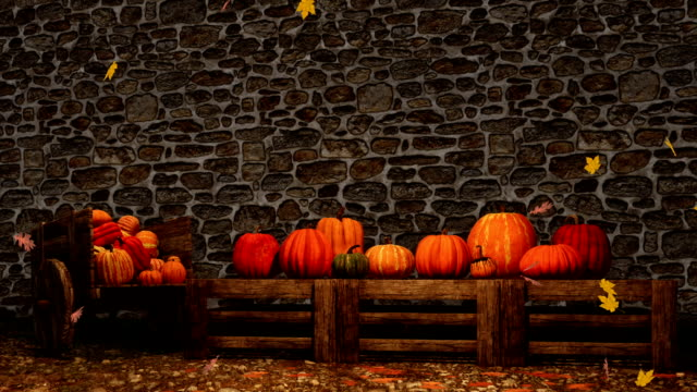 thanksgiving autumn pumpkins on stonework wall background - happy thanksgiving filmów i materiałów b-roll