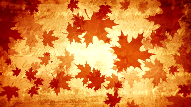 Thanksgiving day vintage background, old background video