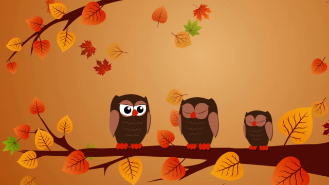 thanksgiving greeting card with owls and autumn leaves - thanksgiving background stock videos & royalty-free footage