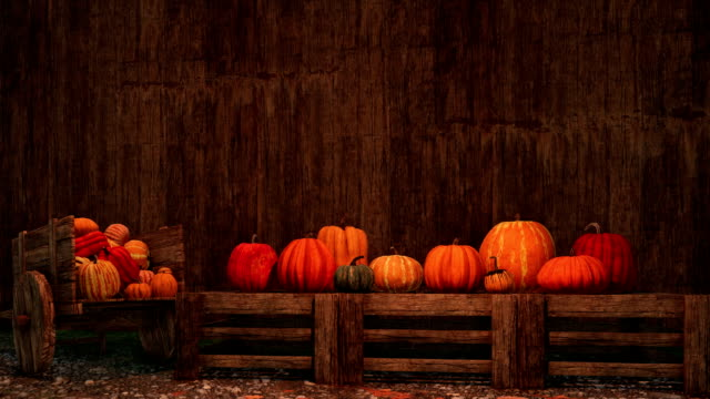 thanksgiving pumpkins on rustic wooden background with copy space - thanksgiving background stock videos & royalty-free footage