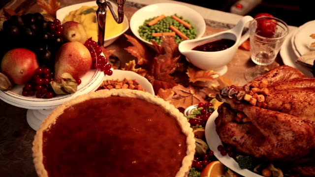 stockvideo's en b-roll-footage met thanksgiving turkey dinner - vogel herfst