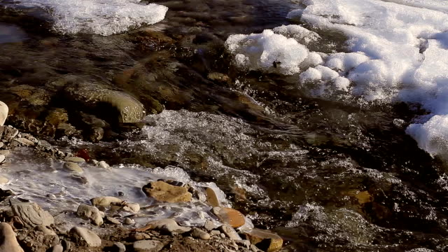 Thaw. video