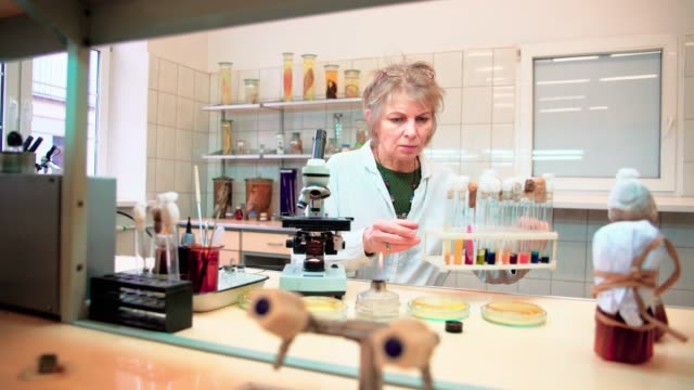 The 50-years-old attractive serious woman, scientist, working with the microscope and bacterial culture in the college microbiology lab video
