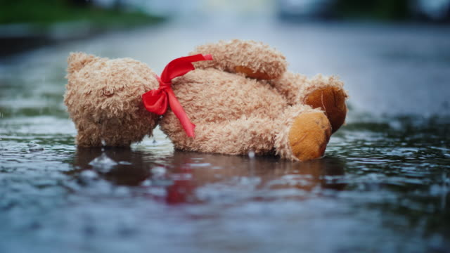 The abandoned little bear lies on a wet road, it's raining. Loss and Depression concept video