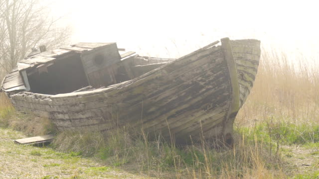 the abandoned wooden boat on the side of the lake - orticoltura video stock e b–roll