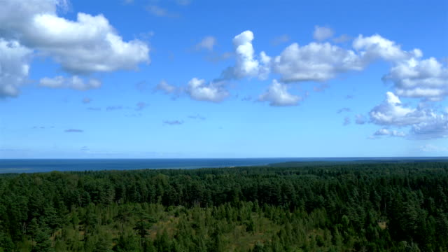 hava güzel manzarası, şehir, estonya gh4 4k - estonya stok videoları ve detay görüntü çekimi