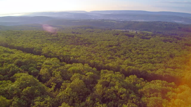 the aerial drone view of the appalachian mountains near by jim thorpe (mauch chunk) and lehigh river in carbon county, poconos region, pennsylvania, usa - горы поконо стоковые видео и кадры b-roll