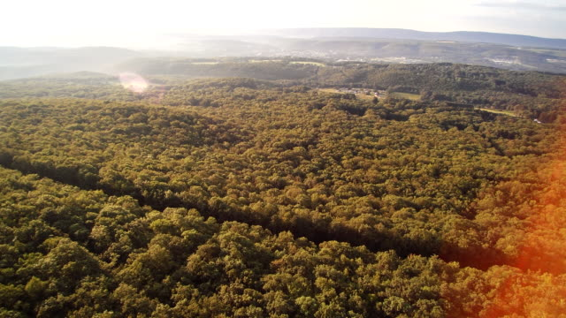 The aerial drone view of the Appalachian Mountains near by Jim Thorpe (Mauch Chunk) and Lehigh River in Carbon County, Poconos region, Pennsylvania, USA video