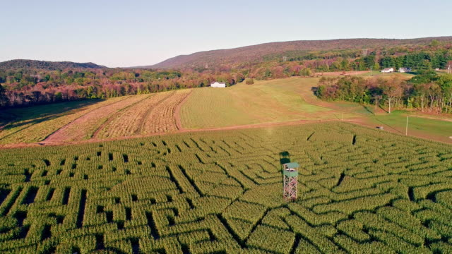 The aerial scenery panoramic drone video of the huge Halloween's Corn Maze in Pennsylvania, Poconos Region video