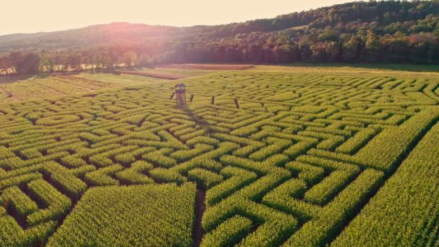 The aerial scenery panoramic drone video of the huge Halloween's Corn Maze in Pennsylvania, Poconos Region