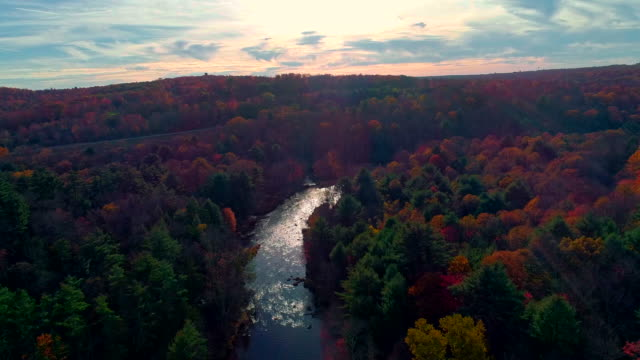 the aerial scenic view on the tobyhanna creek, poconos, pennsylvania. drone video. - горы поконо стоковые видео и кадры b-roll