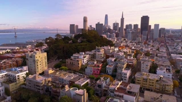 The aerial view of San Francisco Downtown at sunset, over the residential district - vídeo