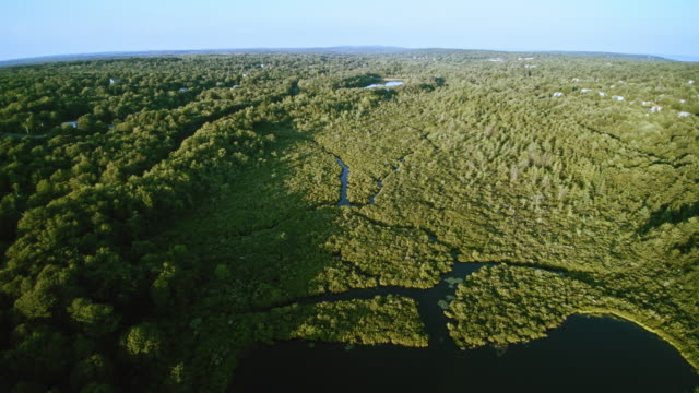 The aerial view of the community, forest, swamps and rivers in Poconos, Pennsylvania The aerial view of the community, forest, swamps and rivers in Poconos, Pennsylvania, USA. 4K UHD panoramic aerial view duckweed stock videos & royalty-free footage