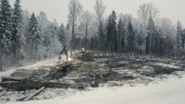 The aerial view of the log grappler on the forest The aerial view of the log grappler on the forest and the snow on the ground on a winter construction equipment stock videos & royalty-free footage