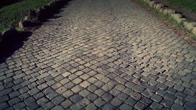 The Appian way in Rome, or Via Appia Antica video
